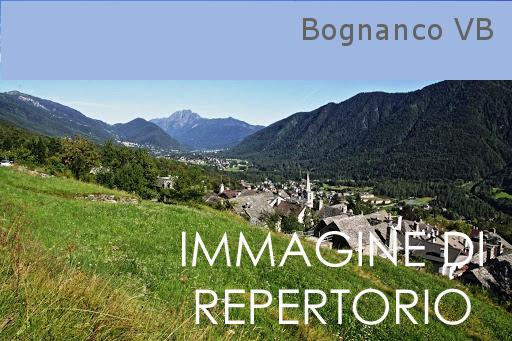 Webcam Val Bognanco
